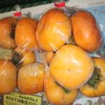 20141012 刀根柿