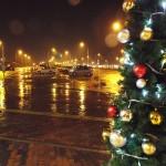 クリスマスツリーH26.12.4a