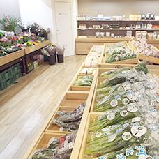 かほっくりや紋平柿など産直野菜コーナー